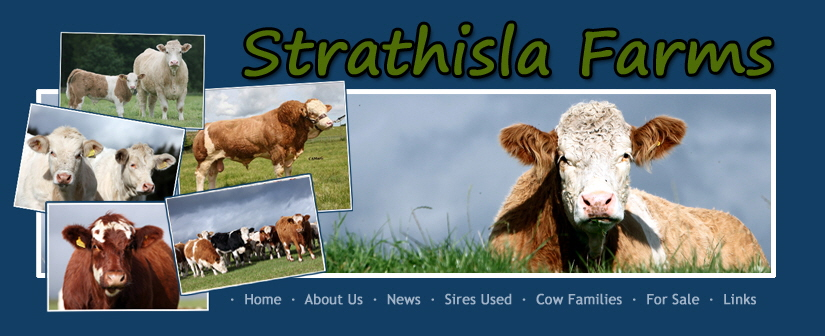 Strathisla Farms